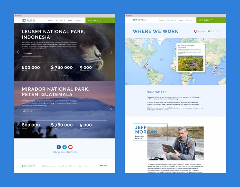Website Development and Design for Global Conservation