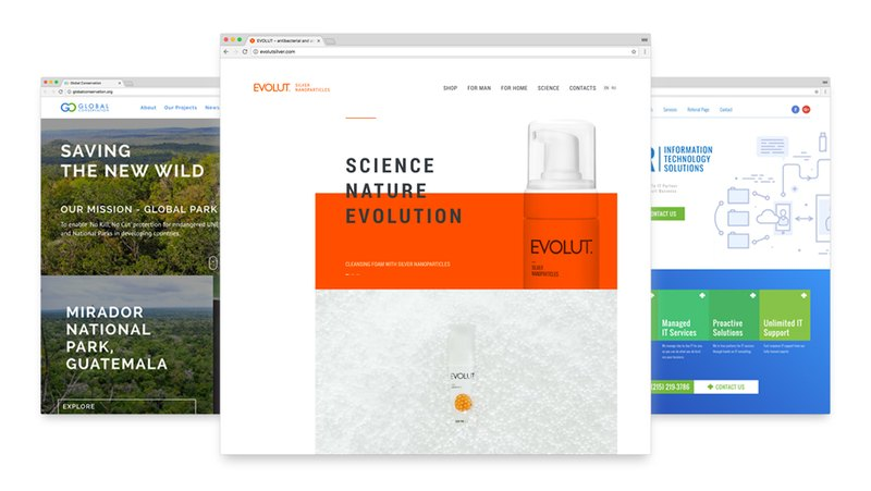 Exemple of professional website design, img 1