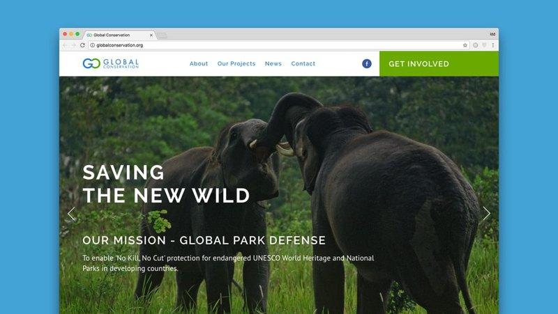 Website usability and SEO in Global Conservation website
