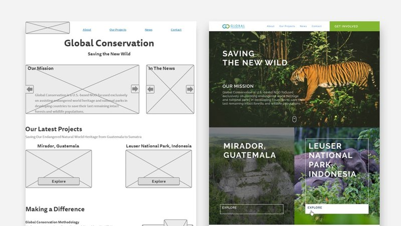 Prototype for Global Conservation website