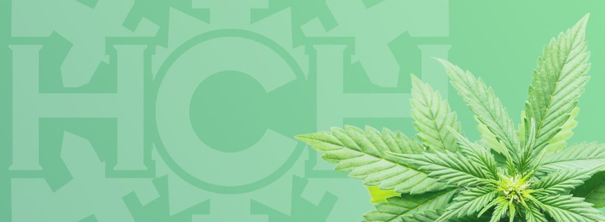 SEO Services for a CBD Dispensary Chain