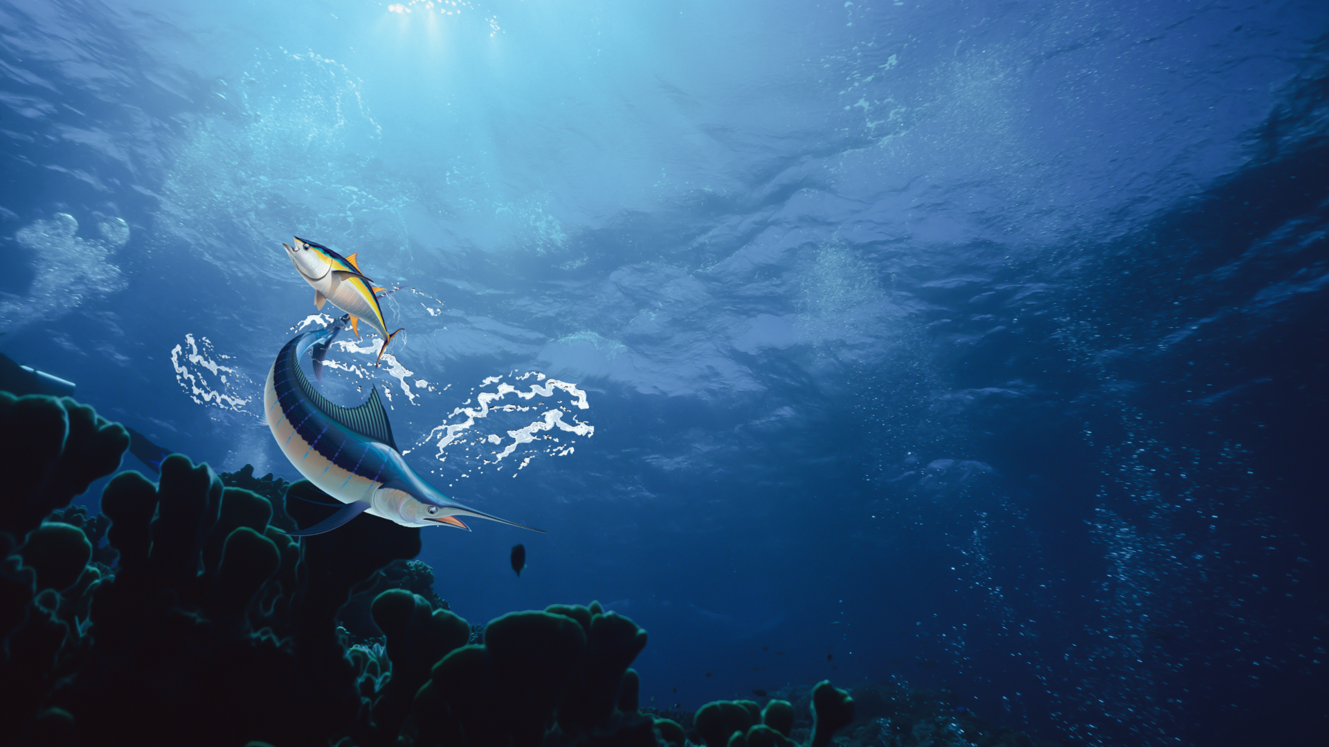 Two fish on Deep Blue Air main background