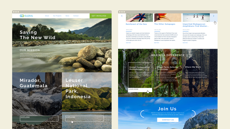 Website Development for Global Conservation - home page design 1 version