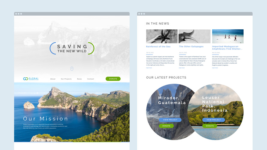Website Development for Global Conservation - home page design 2 version